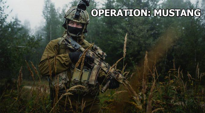 27.05 – 28.05. Operation Mustang